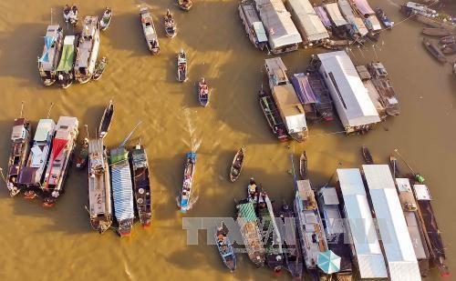 カントー市のカイラン水上市場、観光客を魅了 - ảnh 1