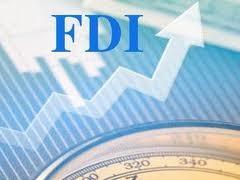Meningkatkan hasil-guna  menyerap modal  asing langsung (modal FDI). - ảnh 3