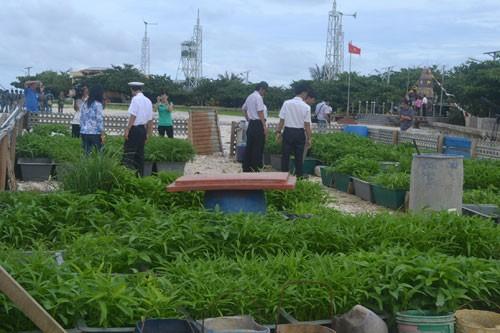 Mengunjungi pola pertanian di kepulauan Truong Sa - ảnh 2