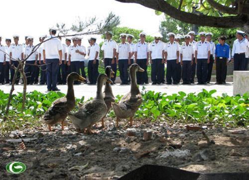 Mengunjungi pola pertanian di kepulauan Truong Sa - ảnh 3