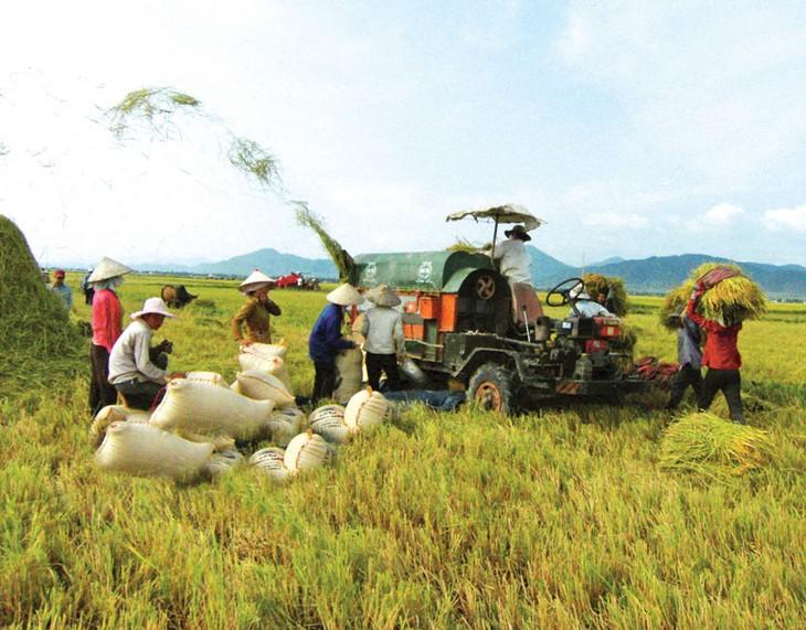 Melancarkan masuknya sumber modal investasi pada pertanian - ảnh 1