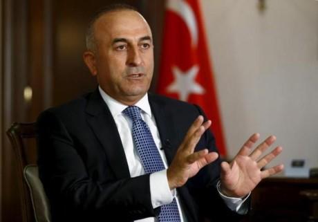 Turki menyatakan akan memboikot perundingan damai  Suriah kalau ada pertisipasi  orang Kurdi - ảnh 1