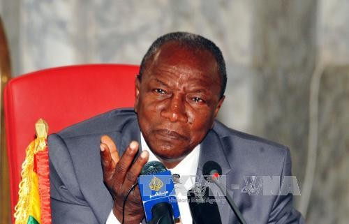 Liga Afrika menyatakan  sepenuh mendukung Perjanjian Paris tentang perubahan iklim - ảnh 1