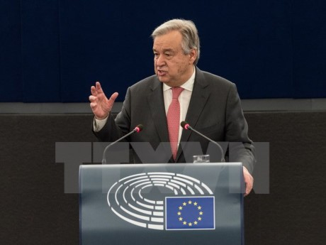 PBB berseru supaya mengadakan lagi  perundingan tentang solusi dua Negara di Timur Tengah - ảnh 1