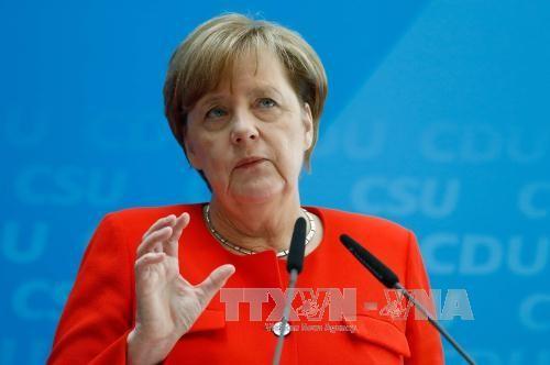 Kanselir Jerman berharap agar G20 akan mencapai kebulatan pendapat tentang masalah antiterorisme - ảnh 1