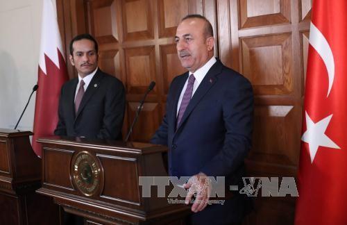 Ketegangan diplomatik di Teluk : Qatar dan Turki berupaya keras untuk menemukan solusi - ảnh 1