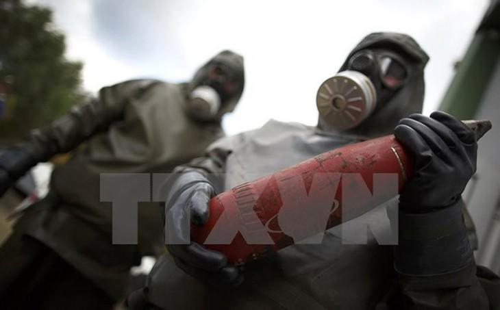 Pemerintah Suriah mengingkari penggunaan senjata  kimia - ảnh 1