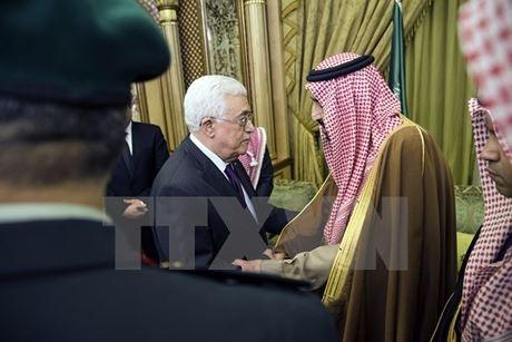 Arab Saudi dan Palestina  berbahas tentang proses perdamaian Timur Tengah - ảnh 1