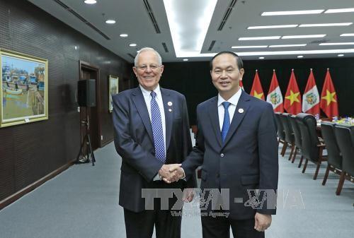 Presiden Vietnam, Tran Dai Quang menemui para pemimpin dari perekonomian- perekonomian APEC sehubungan dengan Pekan Tingkat Tinggi APEC 2017 - ảnh 1