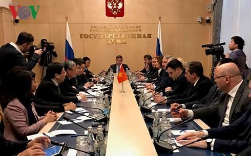 Delegasi tingkat tinggi Partai Komunis Vietnam melakukan kunjungan di Federasi Rusia - ảnh 1