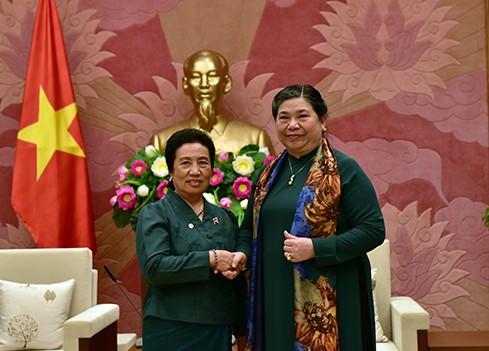 Memperkuat kerjasama komprehensif Vietnam-Laos - ảnh 1