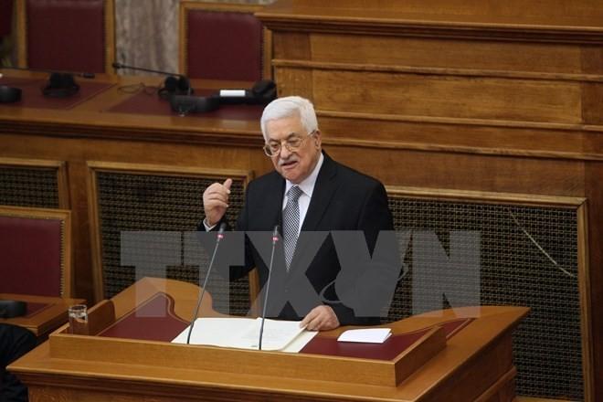 Liga Arab  mendukung rencana perdamaian yang diajukan Pemerintah Palestina    - ảnh 1