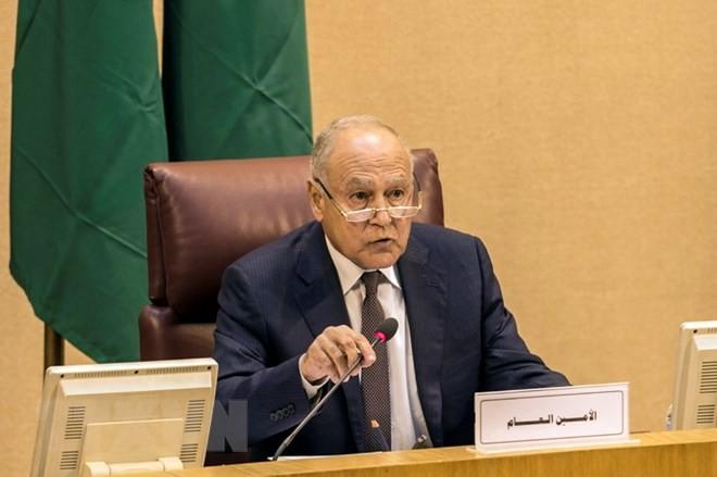 Pemimpin  Liga Arab berseru kepada dunia internasional supaya mencegah pelanggaran Irsrael  terhadap orang Palestina - ảnh 1
