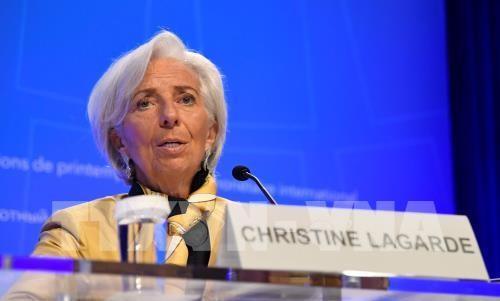 IMF:  Kebijakan-kebijakan keuangan dan perdagangan  AS menciptakan  bahaya terhadap ekonomi global - ảnh 1