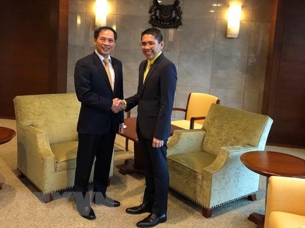 Deputi Harian Menlu Viet Nam, Bui Thanh Son melakukan kunjungan kerja di Singapura  dan India - ảnh 1