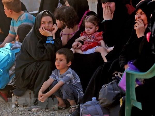 Perancis dan Rusia berkoordinasi  mengirim barang bantuan kemanusiaan ke Suriah - ảnh 1