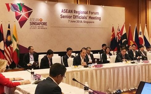 Konferensi Menteri ASEAN+3, Konferensi Tingkat Tinggi Asia Timur dan ARF - ảnh 1