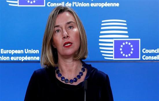 PBB  dan EU mengusahakan solusi perdamaian  untuk Suriah - ảnh 1