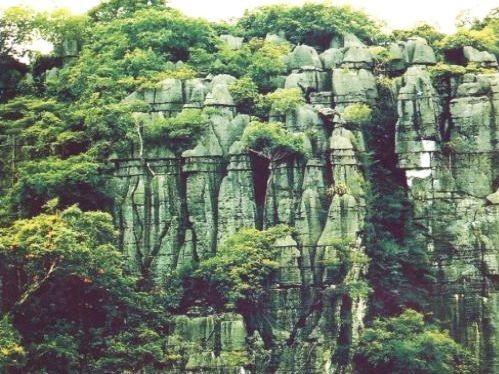 Taman Nasional Phong Nha-Ke Bang- destinasi yang menarik bagi para wisatawan - ảnh 2