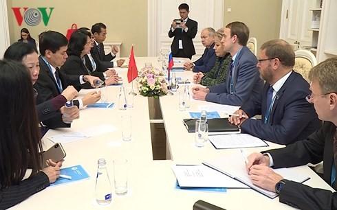 Wapres Viet Nam,  Dang Thi Ngoc Thinh mengadakan  pertemuan dengan Ketua Dewan Federal Rusia, V.Matvienko - ảnh 1