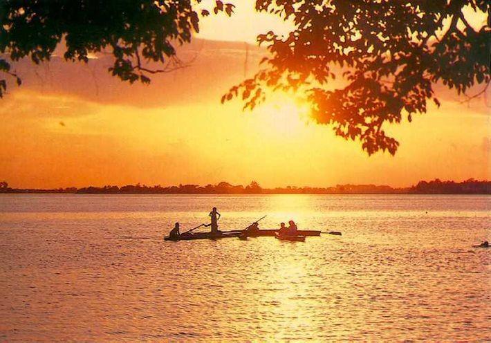 Danau Tay-destinasi wisata yang menarik di tengah-tengah Kota Ha Noi - ảnh 1