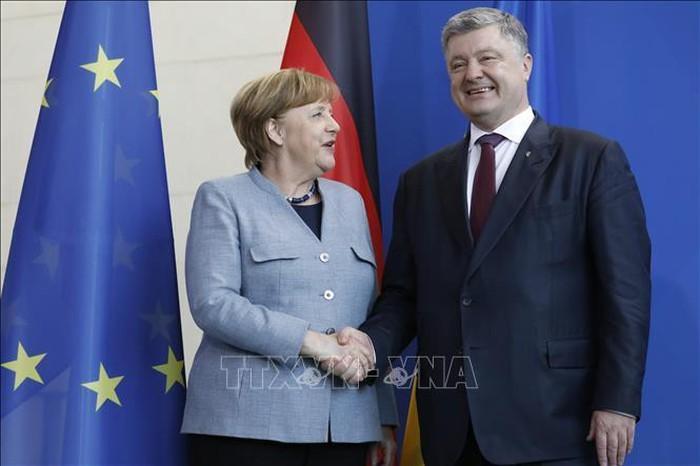 Jerman, Perancis, Ukraina menyambut baik partisipasi Rusia  pada proses politik di  Donbass - ảnh 1