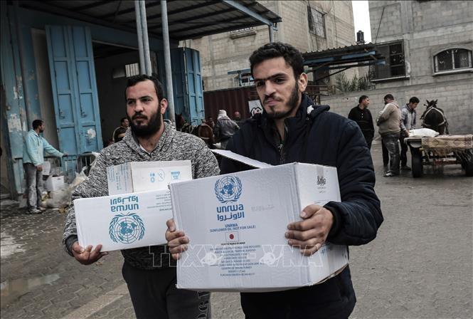 PBB memperingatkan  bahwa bantuan pangan kepada Palestina sedang mengalami kekurangan anggaran serius  - ảnh 1