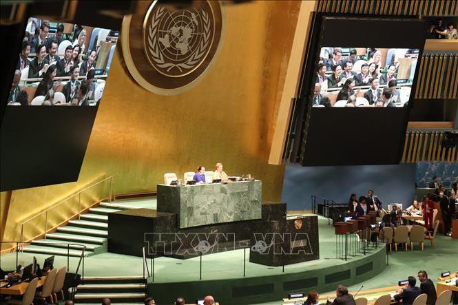 Opini umum internasional  tentang  terpilihnya Vietnam menjadi Anggota Tidak Tetap DK PBB - ảnh 1