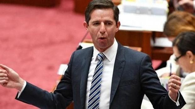 Australia  berseru supaya melakukan reformasi mendesak untuk membela WTO - ảnh 1
