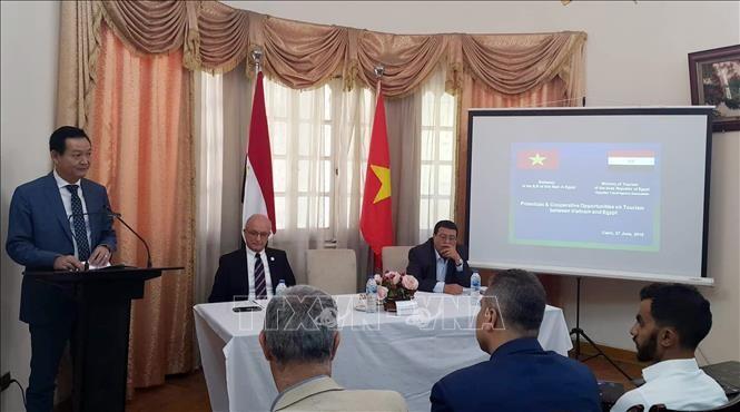 Mendorong  kerjasama pariwisata Viet Nam-Mesir - ảnh 1