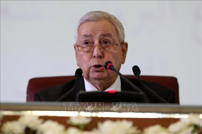 Aljazair: Presiden sementara berseru supaya mengadakan dialog nasional - ảnh 1