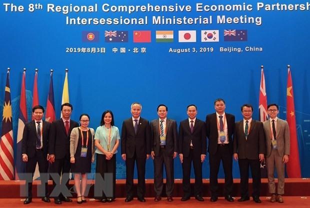 Viet Nam menghadiri Konferensi RCEP di sela kali ke-8 di Tiongkok - ảnh 1