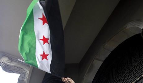 Appel à la cessation immédiate de la violence en Syrie - ảnh 1