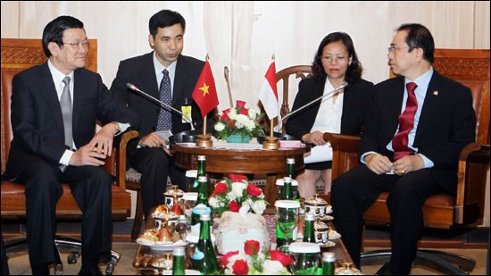 Journée chargée pour le président Truong Tan Sang en Indonésie - ảnh 1