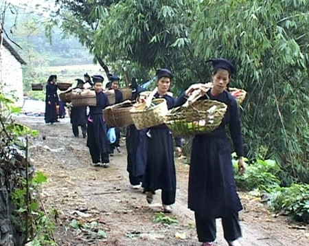 Custom of asking for wedding presents of the Tay  - ảnh 1