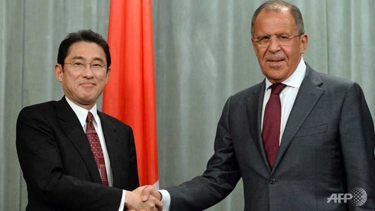 Russian, Japanese Foreign Ministers discuss bilateral ties - ảnh 1
