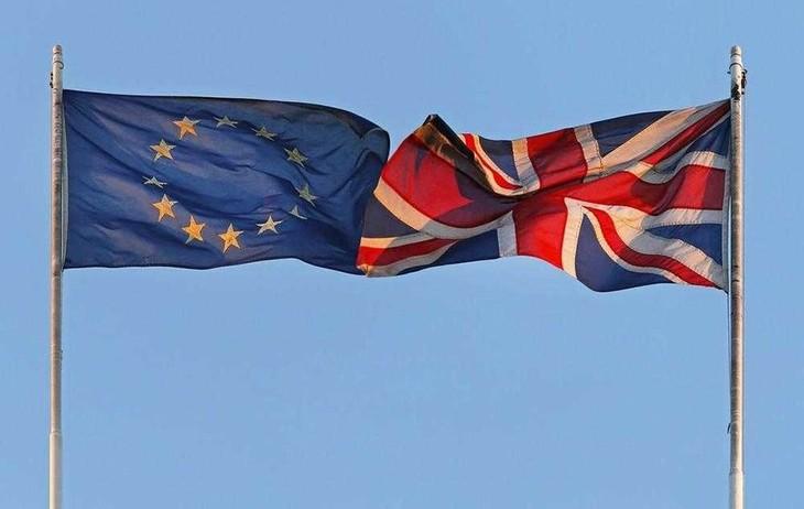 UK, EU warn of Brexit impacts - ảnh 1