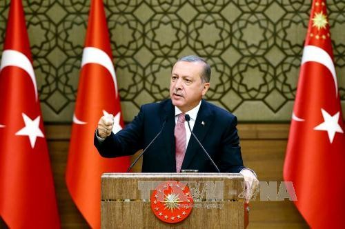 Turkey's government strives to resume stability - ảnh 1