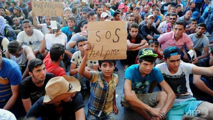Migrant crisis: darkness in 2016 - ảnh 1