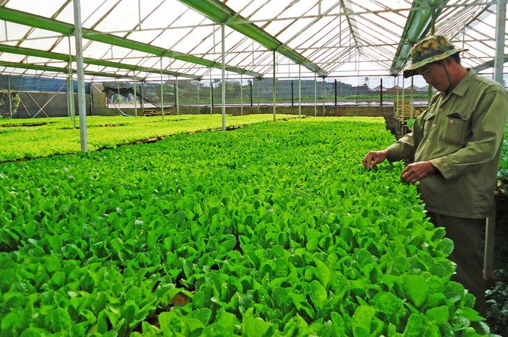 Promoting Vietnam's green brand names  - ảnh 1