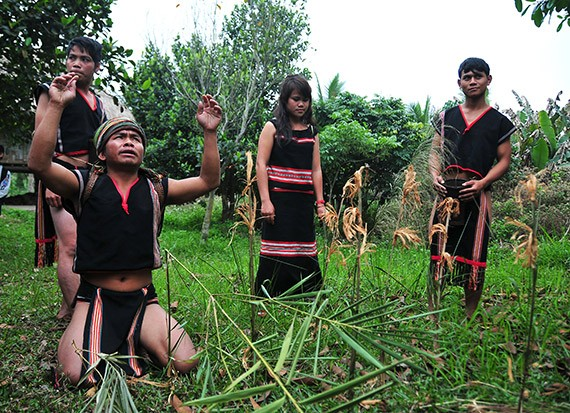 New rice celebration of the Xo Dang - ảnh 3