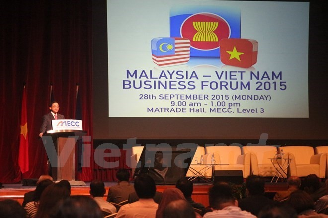 Malaysian firms seek investment and business opportunities in Vietnam - ảnh 1