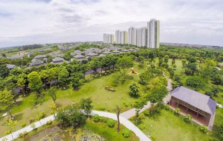 Green works – new trend in sustainable development in Vietnam - ảnh 1