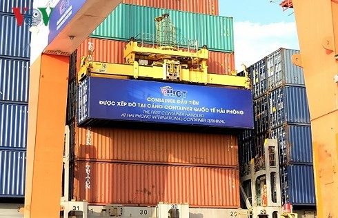 Hai Phong International Container Terminal welcomes first ship - ảnh 2