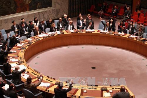 布隆迪同意联合国在该国部署警察 - ảnh 1