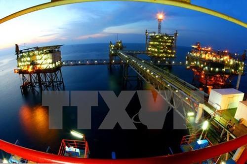 将越南天然气工业建设成为达到世界和国际水平的工业 - ảnh 1