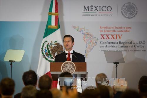 墨西哥选举竞选活动正式启动 - ảnh 1