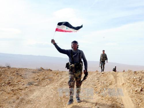 """叙利亚军队从""""伊斯兰国""""手中夺回卡瑞亚坦镇 - ảnh 1"""