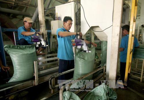 越南4月消费物价指数上涨0.33% - ảnh 1