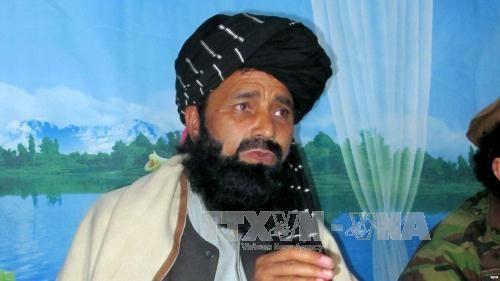 塔利班组织高级指挥官在阿富汗被击杀 - ảnh 1